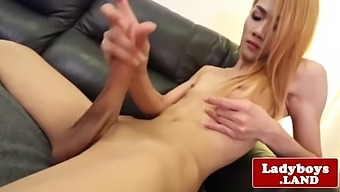 Hung Ladyboy Beauty Solo Toying Her Tight Ass
